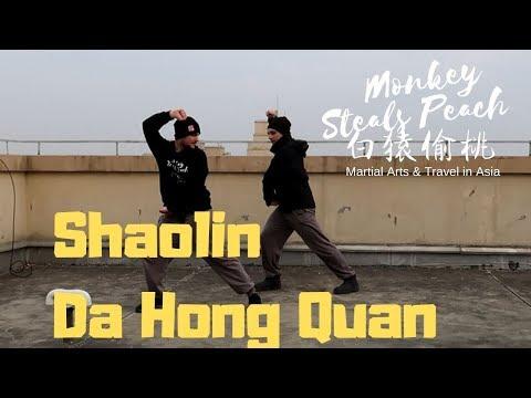 Some nice Shaolin Da Hong Quan from Monkey Steals Peach