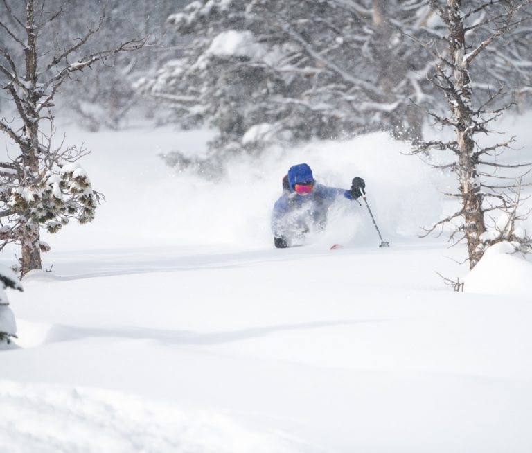 The Best Online Backcountry Safety Courses