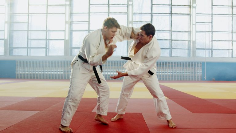 Why you should train your martial art like a sport