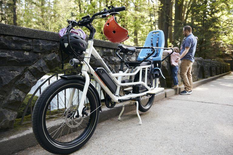 Meet the Cadillac of E-Bikes: The Radwagon 4